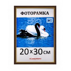 Фоторамка пластикова 20х30, 15-120