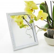 Зеркало в багете 2116-13 13*18
