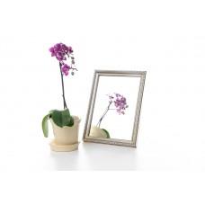 Зеркало в багете, зеркала настольные, зеркала настенные, зеркало с подставкой, 1713-4