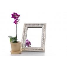 Зеркало в багете 317-65 15*21