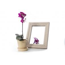 Зеркало в багете 317-128 15*21