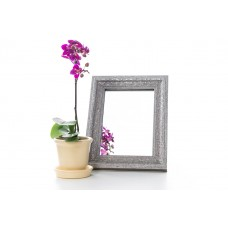 Зеркало в багете 317-129 15*21