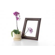Зеркало в багете 3117-16 15*21