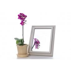 Зеркало в багете 3118-172 15*21